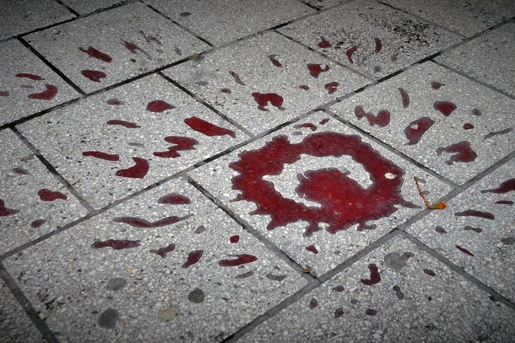 Siege of Sarajevo Sarajevo Rose